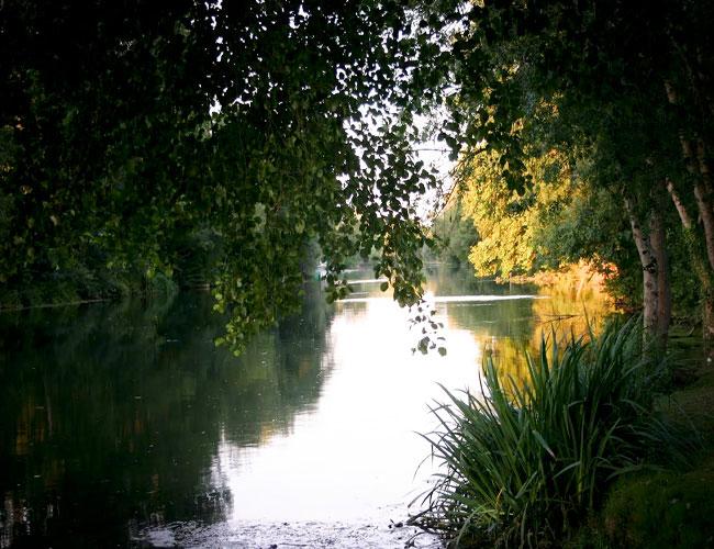 Un petit coin au bord de l'eau